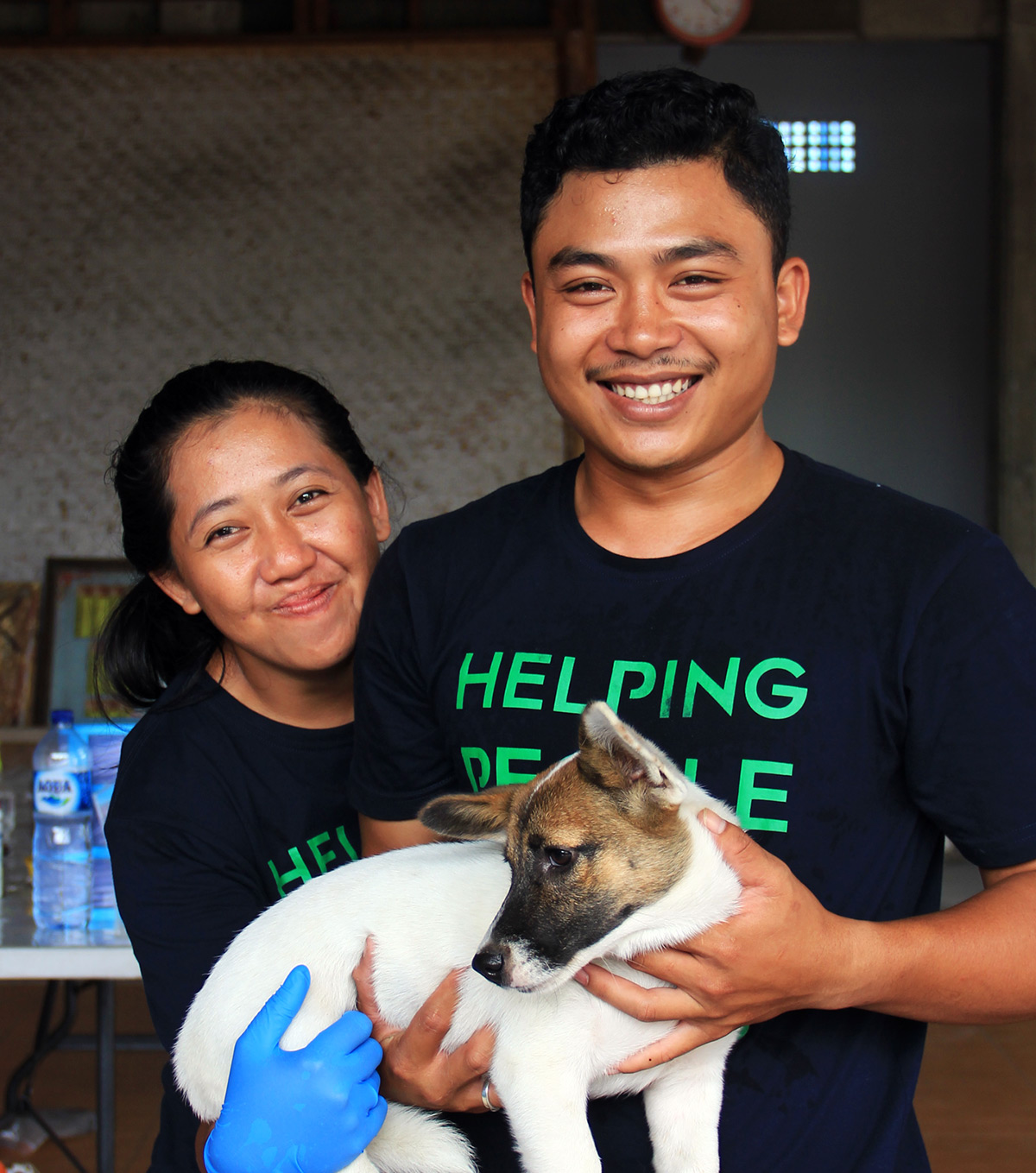 Bali Pet Crusaders Dog Care