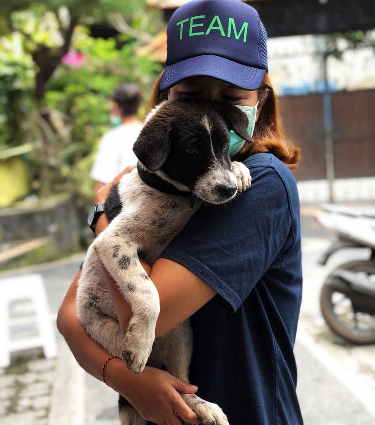 Bali Pet Crusaders Care for Dogs